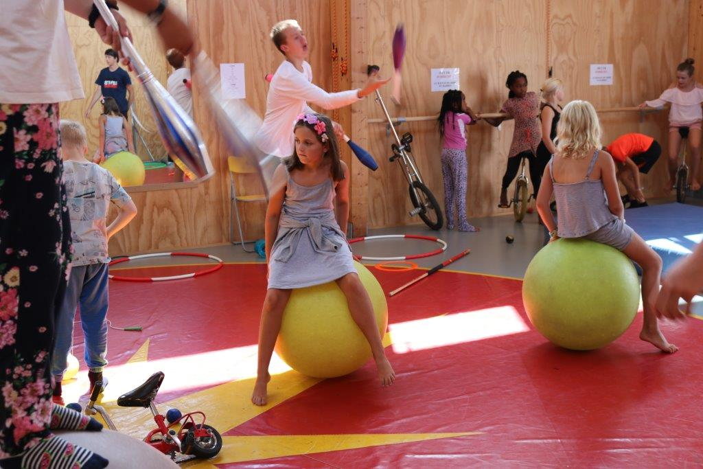Cirkus Artisterier (7)